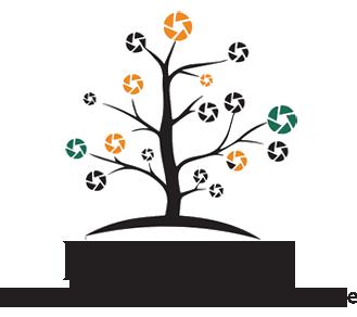 Development Ideas